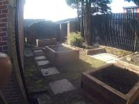 garden with planters and tree