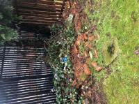 grass with bricks and litter on